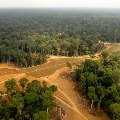 Could Gabon Be on the Forefront of Africa's Next Big Oil Boom?