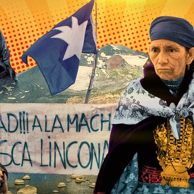 Is She the Mandela of the Mapuche, or a Murderous Terrorist?